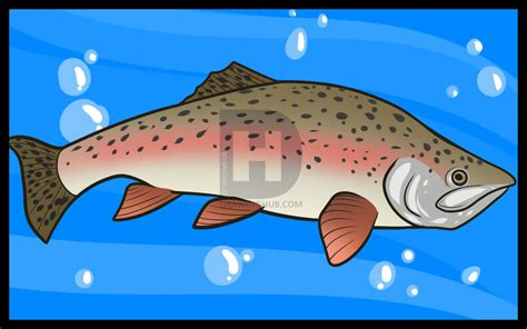 fish table sweepstakes near me how to draw a trout trout fish step by step by