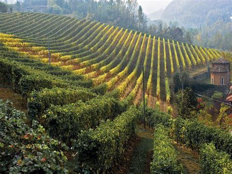sejour italie les langhe le terroir du piemont  jours