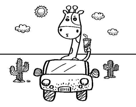 imagenes de jirafas para pintar dibujo de jirafa conduciendo para colorear dibujos net