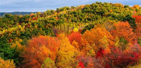 best fall colors the best ways to appreciate hocking fall colors