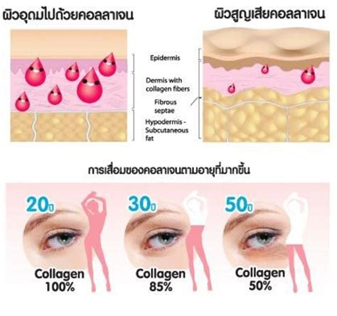 Collagen Peptide donutt collagen peptide 4500 mg thailand best selling