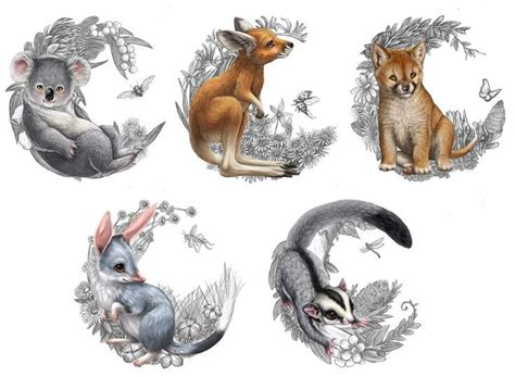 animal tattoo artists sydney drawn rose bush australian wildlife pencil and in color