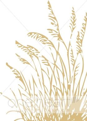 Daun Kari By Wheat Grass Seed wheat clipart wedding seasons images