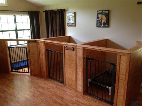 interior dog house barks recreation 11 photos 14 reviews dog walkers 2159 e pkwy gatlinburg tn phone