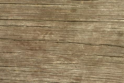 Single Wood Plank Texture