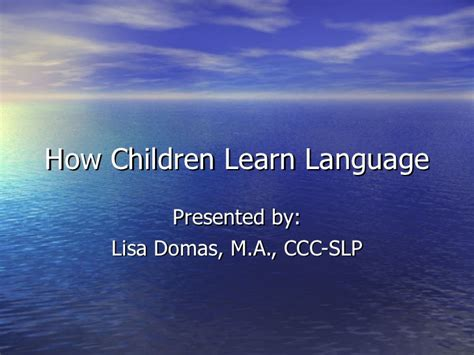how children learn language how children learn language