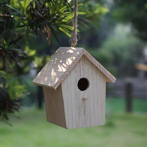 how to get birds to your feeder feeding birds feederwatch
