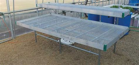greenhouse benches commercial commercial multi level greenhouse bench systems gothic arch greenhouses