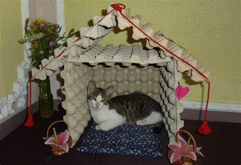 how to make a house a home how to make a cat house from recycled egg trays diy howl