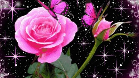 fon animatsiya tsvety  background flowers animation youtube