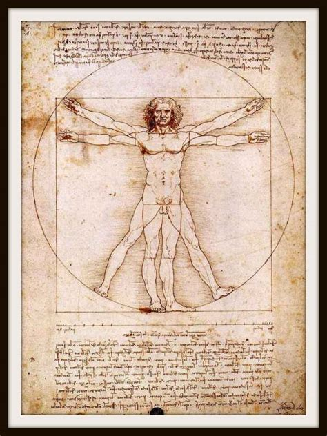 leonardo da vinci paintings drawings quotes biography 301 moved permanently