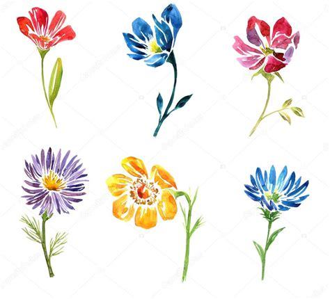 akwarela rysunek kwiat zdjęcie stockowe 169 cat arch