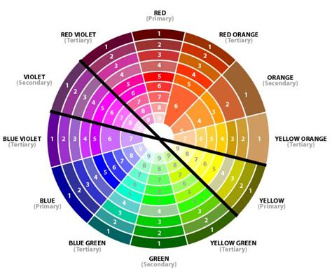 opposite color best 25 complementary color wheel ideas on
