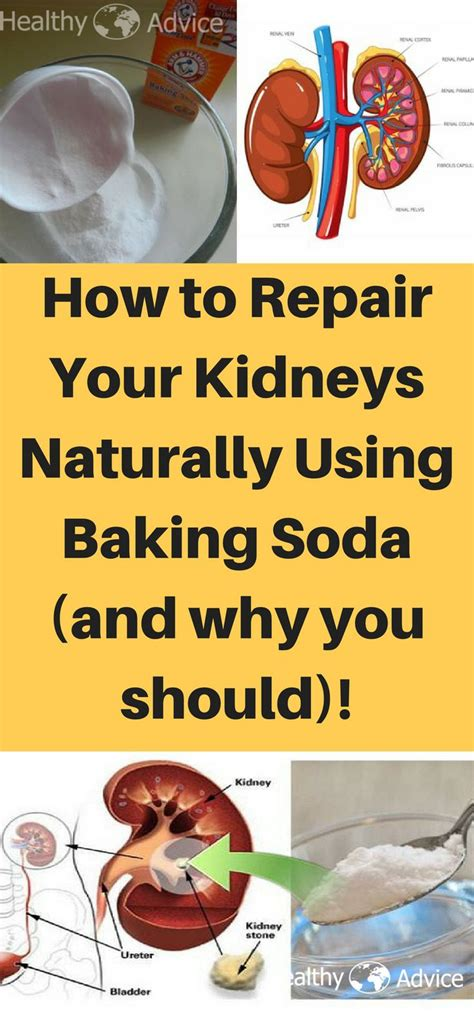 How To Detox Your Kidney Naturally At Home by Best 25 Kidney Cleanse Ideas On Healthy