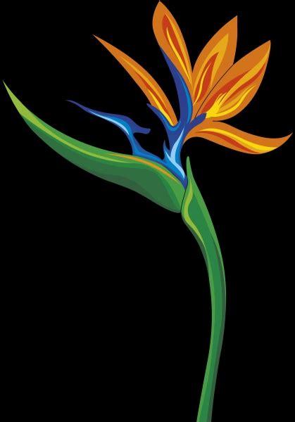 sterlizia fiore ste artistiche quadri e poster con arredamento