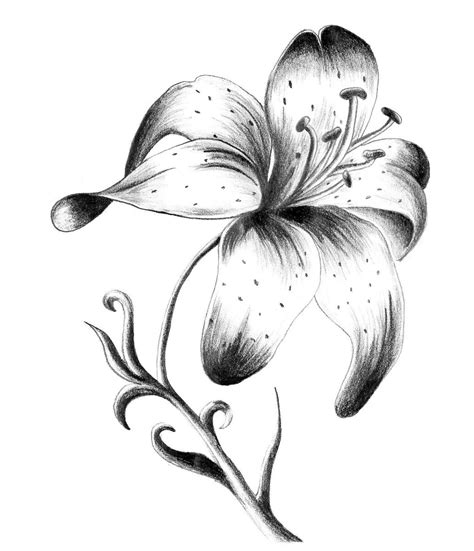 black and white flower tattoo designs single flower
