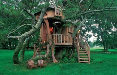 coolest treehouses beautiful tree houses damn cool pictures
