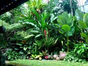 tropical backyard gardens 17 best ideas about tropical landscaping on