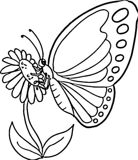 butterfly coloring pages that you can print endless creations with butterfly coloring pages free