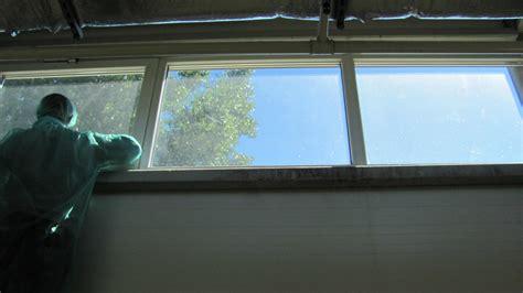 Folia Fg 28 4mil folia okienna bezpieczna ochronna wew 140 181 m iawa p h u andrzej węgłowski