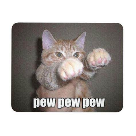 Cute Cat Meme Generator - 25 best ideas about cute memes on pinterest cute animal