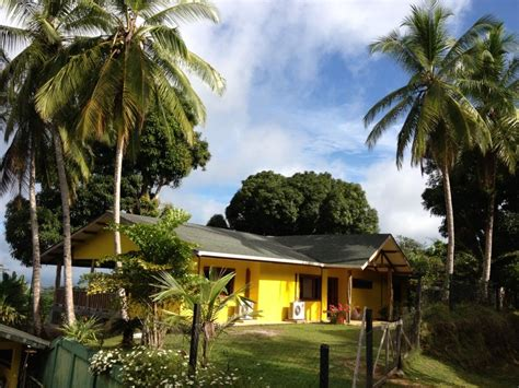 jungle home with 18m pool and views vrbo