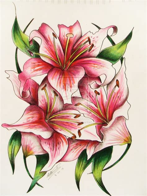 lily tattoo designs free drawing at getdrawings free for personal