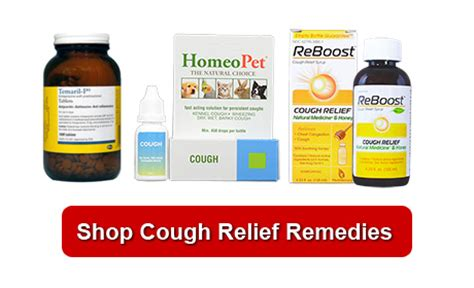 pug cough remedy my keeps wheezing and hacking makesingapore
