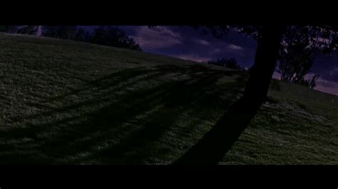 change video format to gif foreground grass change letter boxing and colour