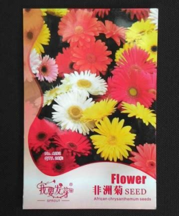 Bibit Bunga Gerbera jual bibit benih bunga gerbera mixed isi 20 biji