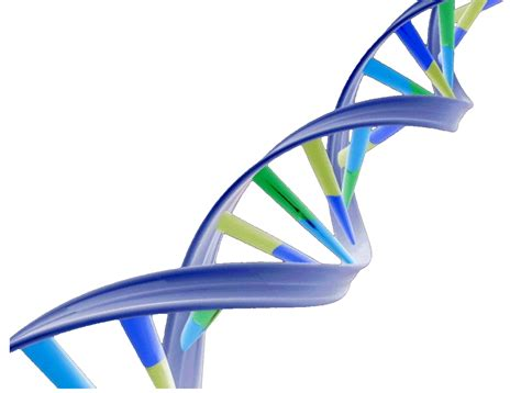 free ppt templates for nanotechnology dna 20clipart clipart panda free clipart images