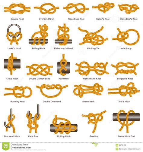 tipos de nudos los nudos y los tipos marinos vector de los tirones