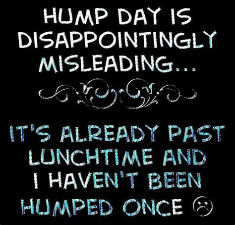 Dirty Hump Day Memes - hump day meme dirty hump day is disappointingly picsmine