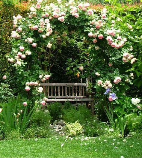 rose arch with bench a fragrant getaway katie moss landscape design
