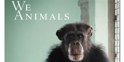 animals in captivity books we animals book exposes sadness of animal captivity with