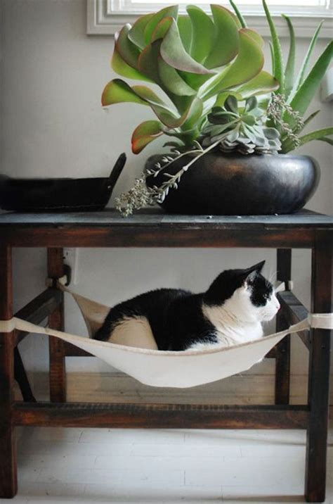 Handmade Cat Beds - diy ideas of pet cat and bed designs about pet