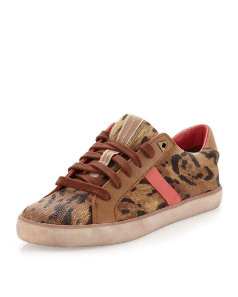 sam edelman leopard sneakers sam edelman hanson leopardprint sneaker tancoral in brown