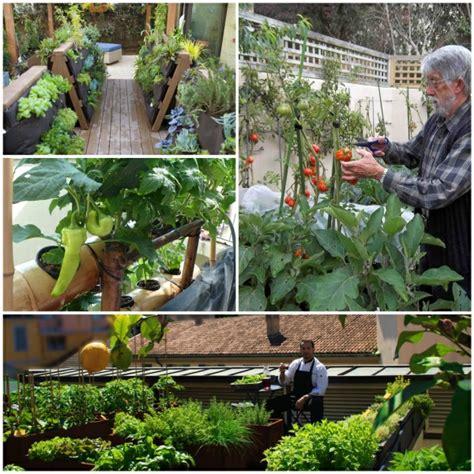 bio garten biogarten auf der terrasse eine gesunde selbstproduktion