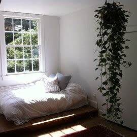 money plant in bedroom bedroom sumally サマリー