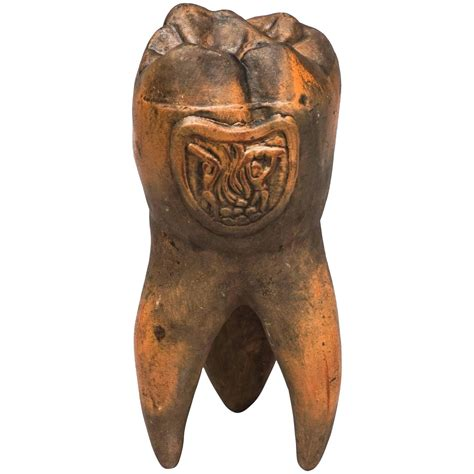 tooth shaped planter tooth shaped planter tooth shaped planter 1000 images