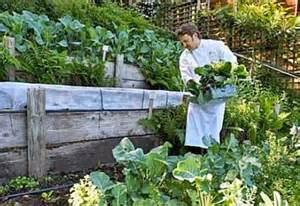 Terracing: How To Grow Vegetables On A Slope   Planet Natural