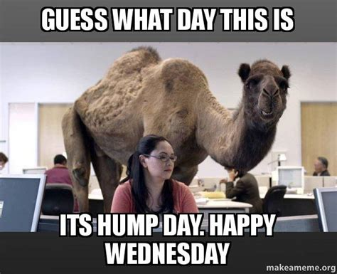 Hump Day Memes - guess what day this is its hump day happy wednesday