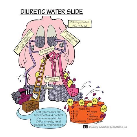 Diuretic Also Search For Diuretic Water Slide N U R S I N G School