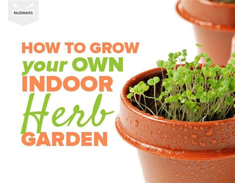 how to grow fresh herbs in your kitchen how to grow your own indoor herb garden in a small space