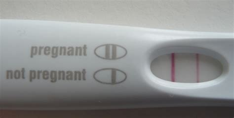 pregnancy test negative pregnancy birth