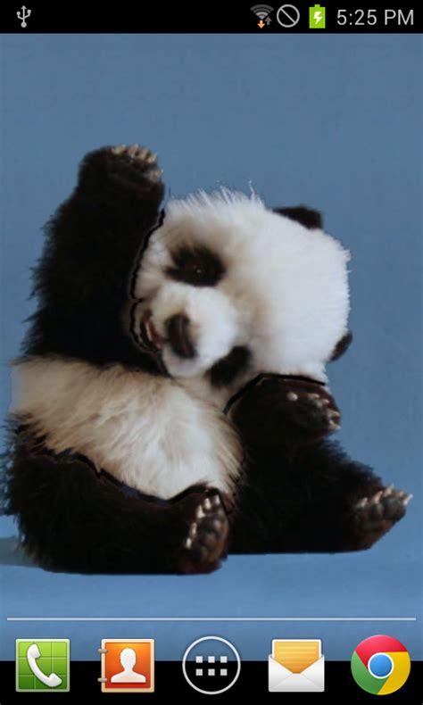 cute wave panda wallpaper apk   android