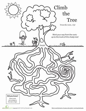 Digital Fruit Tree Maze Perlengkapan Bayi 1 amazing tree maze worksheet education