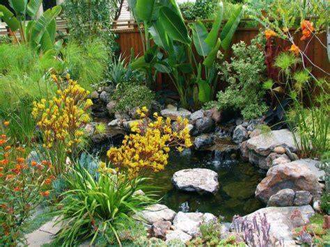 Exotic And Subtropical Gardens Archives Magic Gardens Subtropical Garden Design Ideas