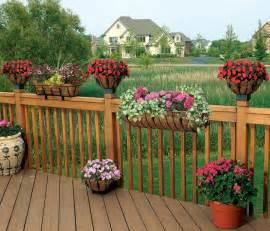 amazon com cobraco htant24 b antoinette 24 inch black horse trough planter patio lawn amp garden