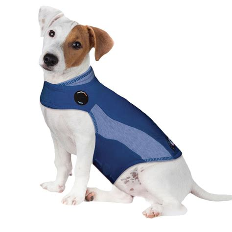 calming vest for dogs top 5 anxiety vests to calm stressed dogs